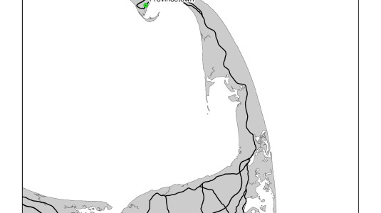Cape Cod Birding Locations